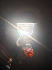 strawberry blonde (gg_ded) Tags: glare starbucks strawberry strawberries pink airplane air plane