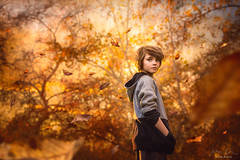 Dust in the Wind ({jessica drossin}) Tags: jessicadrossin portrait child kid boy leaves fall trees falling autumn orange gold yellow perspective wwwjessicadrossincom leaf season