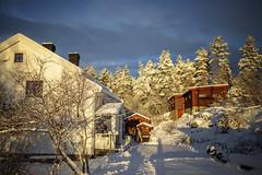 A little gettaway to winter wonderland (MargitHylland) Tags: winter snow akershus norway house