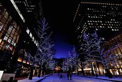 ⛄ Marry Christmas!! 🎅 (sapporo 679) (kaifudo) Tags: 北海道 札幌 冬 クリスマス イルミネーション sapporo hokkaido japan winter christmas illumination nikon d5 nikkor afs 1424mmf28ged 1424mm kaifudo