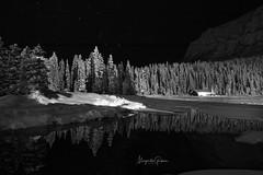 Lake Louise At Night (Margarita Genkova) Tags: winterwonderland snow trees landscape canada lakelouise banffnationalpark nightphotography night stars orion