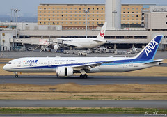 All Nippon Airways (ANA's 50th 787) 787-9 JA882A (birrlad) Tags: haneda hnd international airport tokyo japan aircraft aviation airplane airplanes airline airliner airlines arrival arriving airways landing landed runway boeing b787 b789 787 7879 dreamliner ja882a ana all nippon airjapan ana's50th787