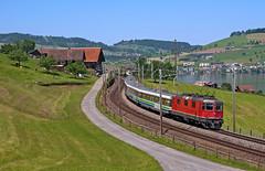 Re4/4'' 11150 + VAE (maurizio messa) Tags: vae voralpenexpress sob uri switzerland svizzera nikond90 re44ii re44 ir2419 treni trains railway railroad mau bahn ferrovia
