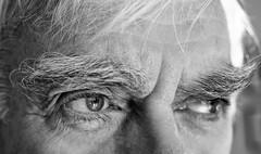 Week 3 Favorite Things (montrealmaggie) Tags: eyebrows