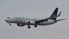 """Boeing B737-8F2(WL), Turkish Airlines Livrée """"Star Alliance"""", TC-JHE (maxguenat) Tags: avion"""