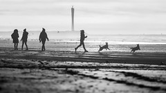 Fighting the burn-out walk - T (Drummerdelight) Tags: beach blackwhite seaside dogs shillouettes peoplewatching candidphotography