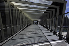overpass (Greg Rohan) Tags: shadows lines tunnel overpass barangaroo australia sydney d750 2018 nikon nikkor people walkway