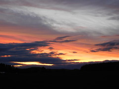 ....beeindruckend.... (elisabeth.mcghee) Tags: abendrot abendhimmel abendsonne sunset sonnenuntergang himmel sky wolken clouds unterbibrach bäume trees wald forest oberpfalz upper palatinate