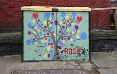 Rosie (Simon_K) Tags: burleybanksy banksy kirkstall burley leeds yorks graffiti junction box cable electricity painted telephone art public