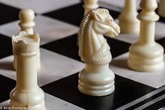 Chess (Balaji Photography : 6 Million+ views) Tags: macromondays macro chess horse canon board macrolens
