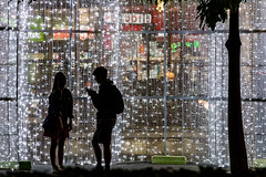 Night life (A Different Perspective) Tags: australia perth boy christmas city decoration girl lights palm silhouette tree
