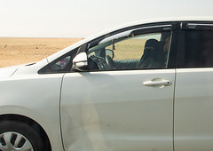 Saudi woman driving alone in a car on the highway, Mecca province, Jeddah, Saudi Arabia (Eric Lafforgue) Tags: adult arabia businessfinanceandindustry car colorimage day driver driving forbidden horizontal independence jiddah journey ksa lifestyles middleeast middleeastern nopeople onthemove oneperson onewomanonly outdoors photography politics politicsandgovernment saudiarabia saudi180613 transportation women jeddah meccaprovince