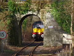 47772 - The Looe Brush Tour - Lamellion Bridge, Coombe [Explored] (Marky7890) Tags: westcoastrailways 1z48 47772 class47 coombejunctionhalt railway cornwall looevalleyline train lamellion