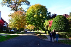 Olive Place In The Fall (Joe Shlabotnik) Tags: foresthillsgardens sue queens autumn november2018 foliage everett fall 2018 violet foresthills proudparents afsdxvrzoomnikkor18105mmf3556ged