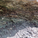 Paleosol (Mill Knob Member, Slade Formation, Upper Mississippian; Clack Mountain Road Outcrop, south of Morehead, Kentucky, USA) 9 thumbnail