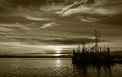 Steveston Harbour Sunset (SonjaPetersonPh♡tography) Tags: steveston harbour fishingboats vessels ships richmond bc britishcolumbia canada sunset silhouettes silhouette stevestonvillage stevestonfishingvillage stevestonwharf stevestonharbour fraserriver boats pier wharf floatingwharf fishermanswharf fishing water river riverscape waterscape waterfront reflections waterreflections