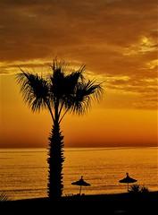Más ambiente playero (zapicaña) Tags: zapigata maroc mar mediterraneo marruecos beach playa