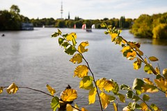 Alster (Northside-Images) Tags: hamburg alster leicacl