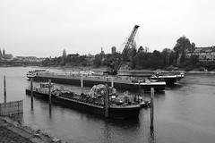 autumn Basel 16-11-2018 002 (swissnature3) Tags: basel switzerland autumn fall river rhine ship