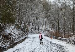 Merry Christmas Eve! (Matt Champlin) Tags: christmas merry merrychristmas holiday walk hike hiking adventure dog dogs fun road home holidays train christmaseve canon 2018 snow winter snowy