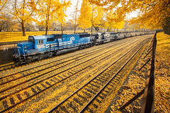 Conrail Blue Trench (benpsut) Tags: alleghenycommonspark conrail conrailquality emdsd60 ns ns538 ns6704 nsfortwayneline norfolksouthern pittsburgh sd60 westpark autumn canopener colorpositionlight fall leaves railroad trains trench yellow yellowbrickroad
