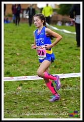 Chloe Phillips (6) (nowboy8) Tags: nikon nikond500 xc nationalxcrelays mansfield berryhillpark notts crosscountry relays relay woods cleethorpesac cleeac team