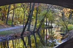 The Riverway Park in Fall, Boston (2604) (mamieli2016) Tags: autumnmorning autumncolors bridge boston theriverwaypark fall autumn reflection river trees