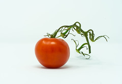 Tomato (cachafla) Tags: a7 alpha canada food fruits green red sony studio tabletop tomato vancouver vegetables veggies white
