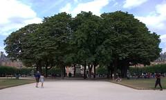 Place des Vosges (Jason Bradley Douglas) Tags: europe france paris