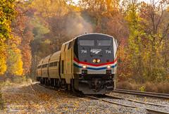 Amtrak GE P32AC-DM (714) (MadMartigen) Tags: metronorthrailroad transportation train railroad amtrak amtk locomotive gep32acdm genesis ge generalelectric gegenesis p32acdm ny newyork fall autumn