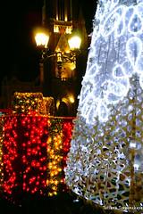 Украшения на улице Модене (tatianatorgonskaya) Tags: сербия зимавсербии новыйгод рождество европа балканы путешествие блогопутешествиях блогожизнизарубежом balkans balkanstravel balkan srbija serbia europe novisad новисад зимавновисаде новыйгодвсербии новыйгодвевропе