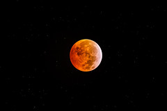 Moon Eclipse (Franck) : totality (Club Astro PSA) Tags: astronomie lune eclipse astrophoto astronomy moon red rouge blood bloodmoon sky ciel deep night nuit star stars etoile dark noir sombre astro phase totaly shadow earth ombre terre totale totalité totality 2019 first premiere lunar lunaire