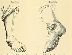 index image
