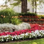 St. Catharines Ontario - Canada - Merritt House -  CKTB - Oak Hill Gardens thumbnail