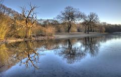 Morning reflections (ArtGordon1) Tags: eppingforest london england uk leytonstone winter frozen reflections reflection hollowpond hollowponds davegordon davidgordon daveartgordon davidagordon daveagordon artgordon1 february 2019
