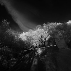 light in shadow (old&timer) Tags: background infrared composite conceptual song4u oldtimer imagery digitalart laszlolocsei