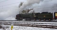Britannia in Explore 28th Jan 2019 no 31 (Trevor Watts Photography) Tags: steam train loco 70000 britannia crewe uk gb january 2019 winter cold ice snow transport