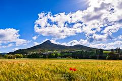 UNZUE (NAVARRA) (jramosvarela) Tags: montañas amapolas pueblo unzue mountains village