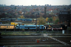 45015, Toton, 22nd November 1995 (Southsea_Matt) Tags: 45015 class45 sulzer peak type4 totondepot nottinghamshire november 1995 autumn diesellocomotive train railway railroad engine vehicle transport