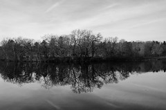 Mt. Feake reflected (ewan.osullivan) Tags: bw river waltham charlesriver blackandwhite monochrome reflection trees mtfeake cemetery