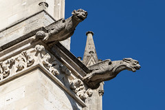 Gargoyles from Amiens Cathedral (Adrià Páez) Tags: gargoyles from amiens cathedral sculptures france europe architecture picardy picardie hautsdefrance sky canon eos 7d mark ii detail