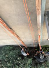013 Ready To Race (saschmitz_earthlink_net) Tags: 2018 california southerncaliforniagrotto christmasparty losangelescounty baldwinhills windsorhills party climbing practice