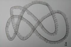 polyphonic image