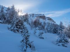 Happy New Year 2019 (oonaolivia) Tags: happynewyear feldis graubünden grisons schweiz switzerland nature landscape landschaft snow winter hiking walking