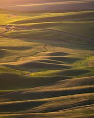 DSCF1999 (Brian.Schick) Tags: palouse steptoe rolling hills sunset minimalism abstract