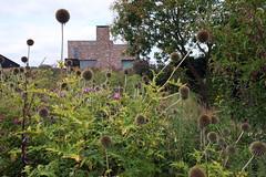 oudolf hummelo (Jörn Schiemann) Tags: piet oudolf private garden nursery hummelo netherlands gardening