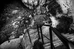 Le grand saut... / The big jump... (vedebe) Tags: escaliers eau mer mediterranée marseille ville city rue street urbain urban noiretblanc netb nb bw monochrome marches