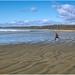a boy and a beach
