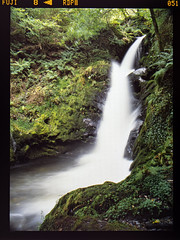 Waterfall on film (Howie Mudge LRPS BPE1*) Tags: dolgoch water waterfall cascade positive fujiprovia100f slidefilm mamiya645pro mediumformat landscape nature nationalgeographic woods woodland forest gwynedd wales cymru uk travel adventure
