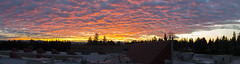 January's Last Sunrise (s.d.sea) Tags: january winter sunrise colorful fire explode clouds sky skyporn kirkland washington washingtonstate wa pnw pacificnorthwest sun pano panorama pentax k5iis 2470mm stitched landscape totem lake lwtech morning outdoors